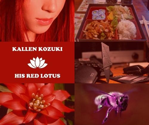 http://rom-brotherhood.ucoz.ru/CodeGeass/6yo/card/card1ans/1-19-Kallen_Kozuki.jpg